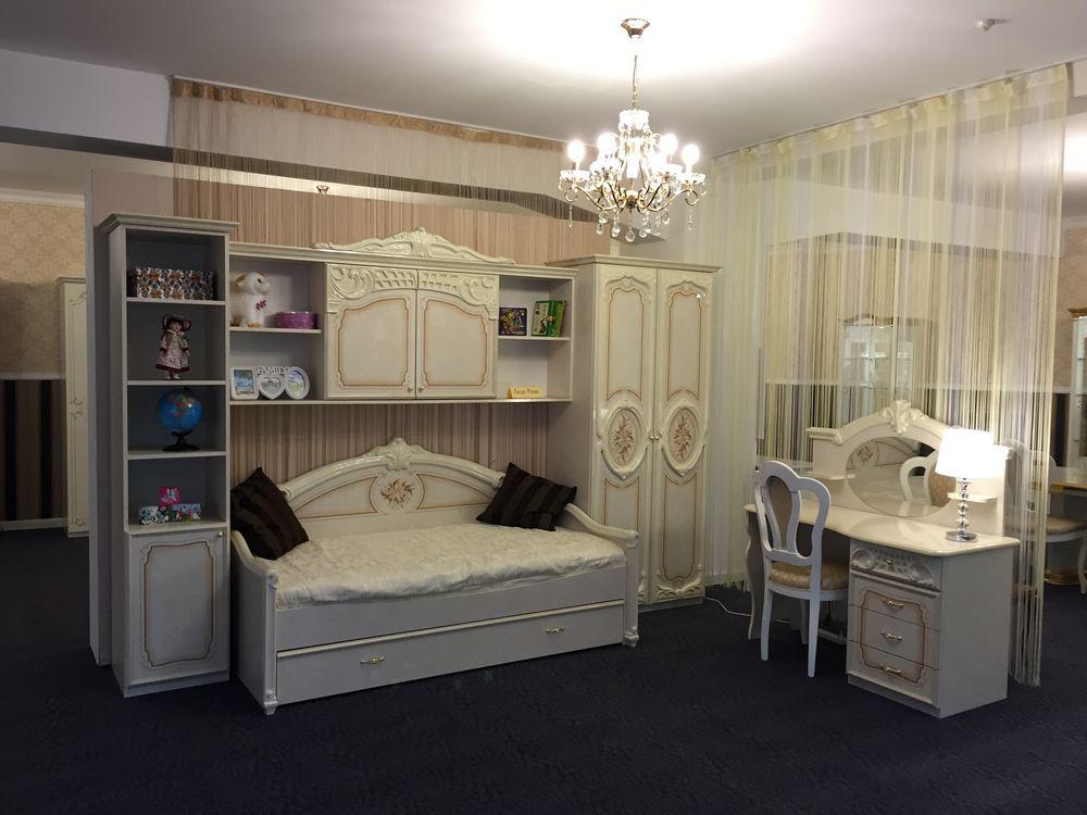 Комплект мебели Леди Роза с кроватью-диваном - фото